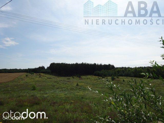 Dom na sprzedaż, Teodorowo, radziejowski, kujawsko-pomorskie - Foto 13