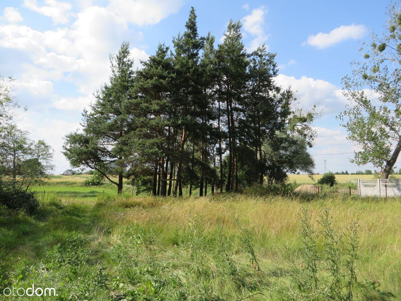 Działka na sprzedaż, Konary, sochaczewski, mazowieckie - Foto 2