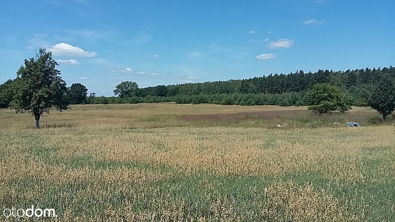 Działka na sprzedaż, Zimna Woda, lubiński, dolnośląskie - Foto 11