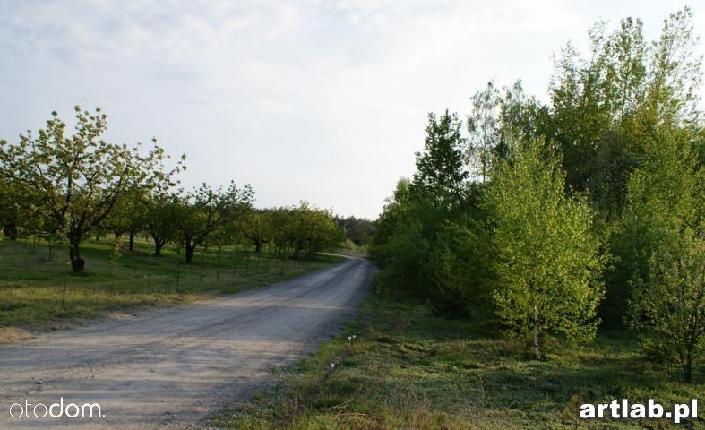 Działka na sprzedaż, Natalin, grójecki, mazowieckie - Foto 12