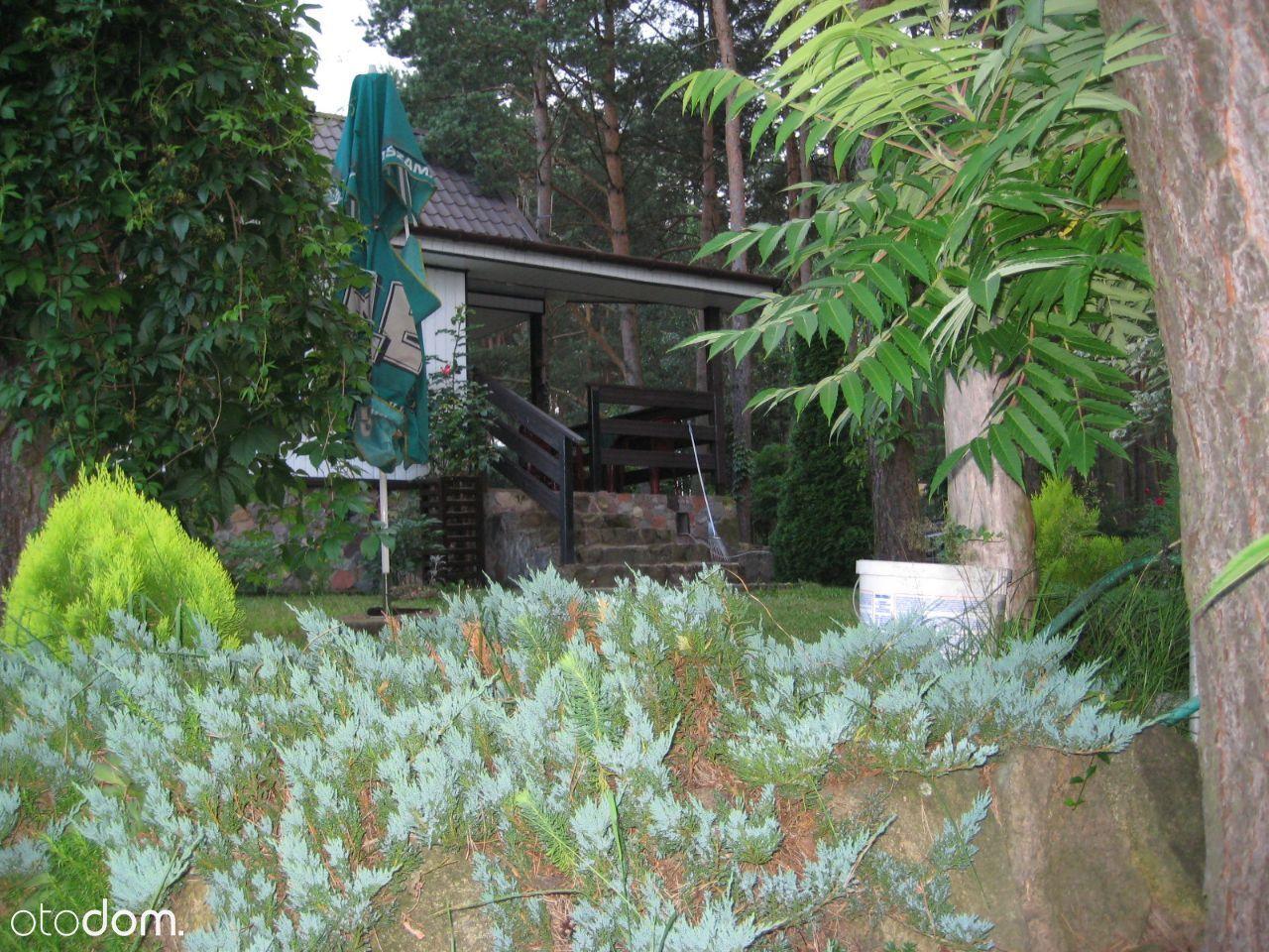 Dom na sprzedaż, Tarczyny, działdowski, warmińsko-mazurskie - Foto 11