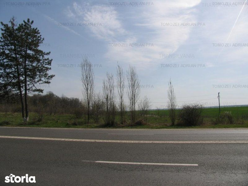 Teren de Vanzare, Tancabesti, Bucuresti - Ilfov - Foto 6