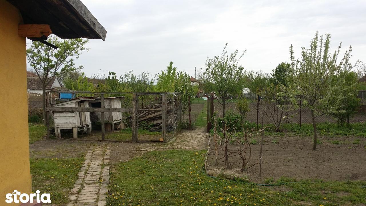Casa de vanzare, Timiș (judet), Peciu Nou - Foto 9