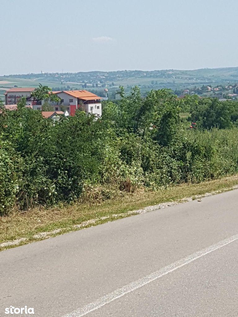 Teren de Vanzare, Bihor (judet), Paleu - Foto 2
