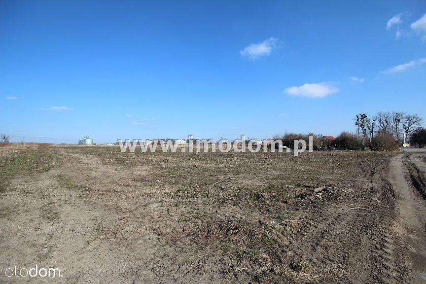 Działka na sprzedaż, Wisznia Mała, trzebnicki, dolnośląskie - Foto 5