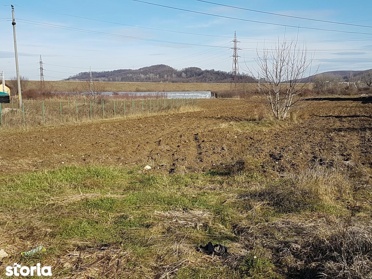 Teren de Vanzare, Argeș (judet), Piteşti - Foto 4