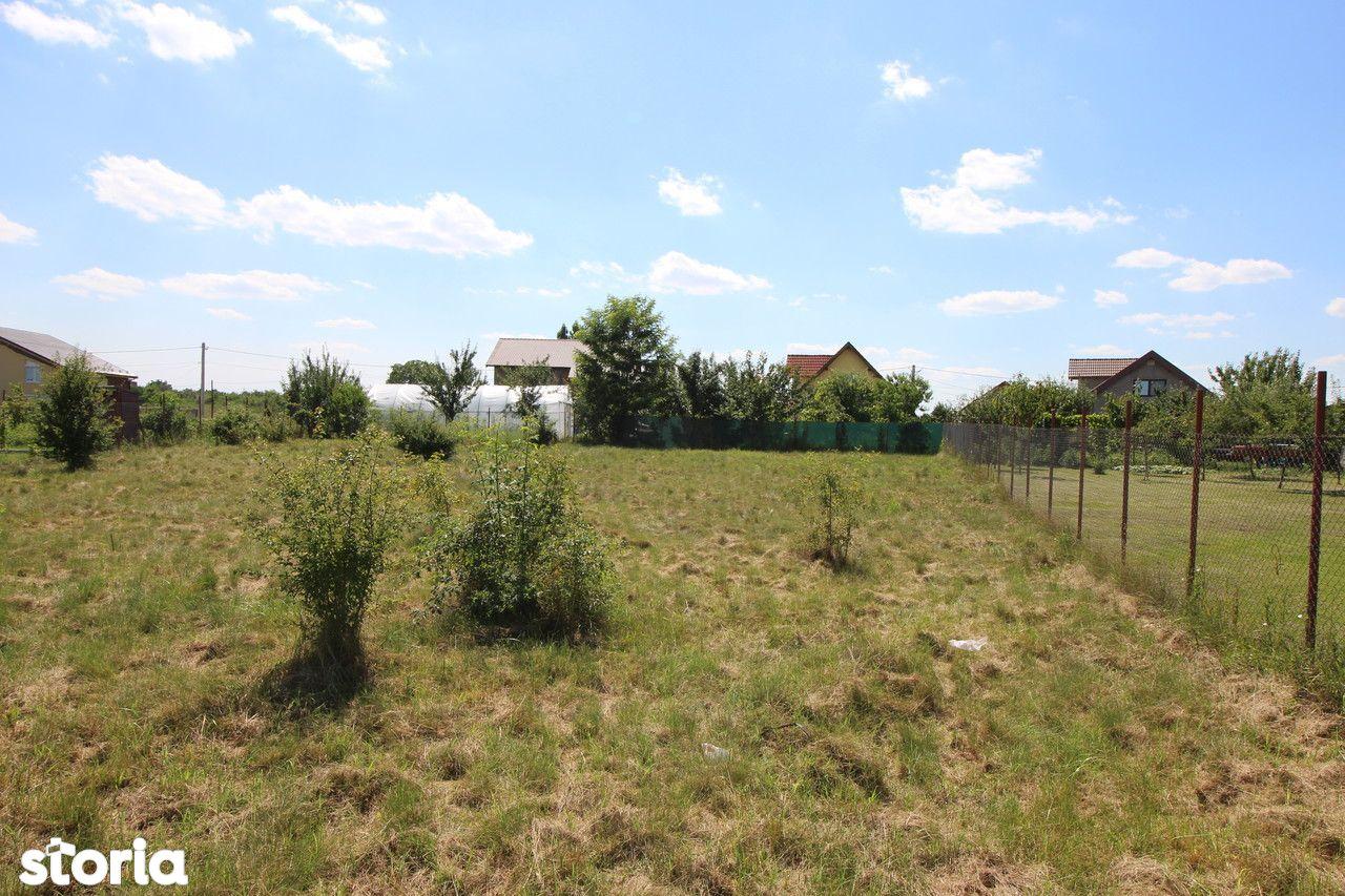 Teren de Vanzare, Timiș (judet), Drumul DJ609F - Foto 9