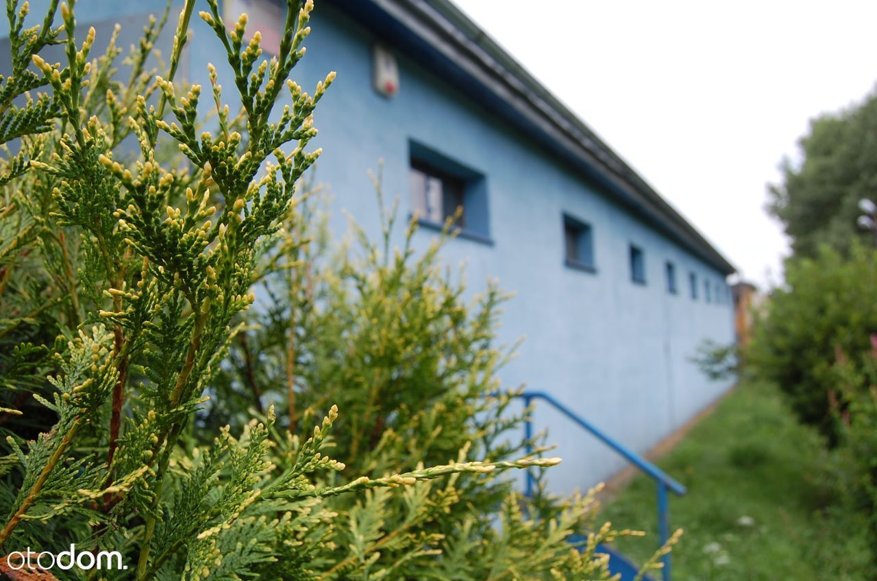 Lokal użytkowy na sprzedaż, Lubawka, kamiennogórski, dolnośląskie - Foto 5