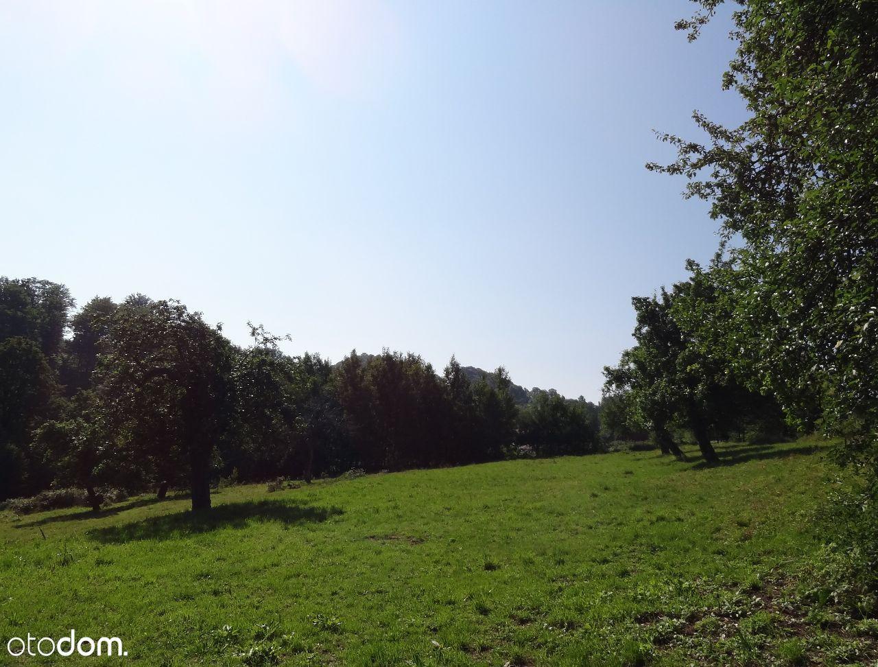 Dom na sprzedaż, Radomice, lwówecki, dolnośląskie - Foto 13