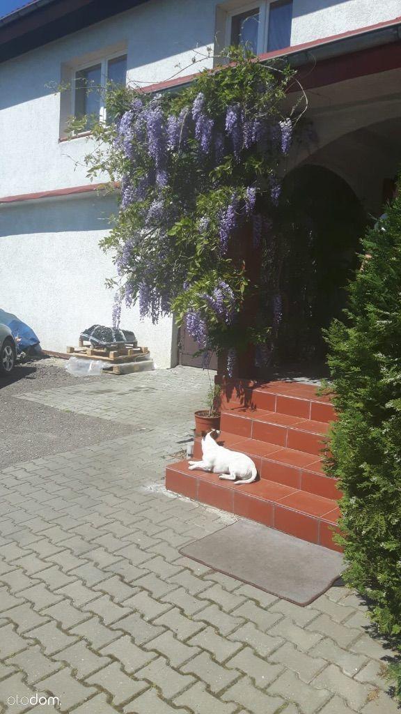 Pokój na wynajem, Komorowo Żuławskie, elbląski, warmińsko-mazurskie - Foto 10