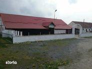 Spatiu Comercial de vanzare, Brașov (judet), Criţ - Foto 19