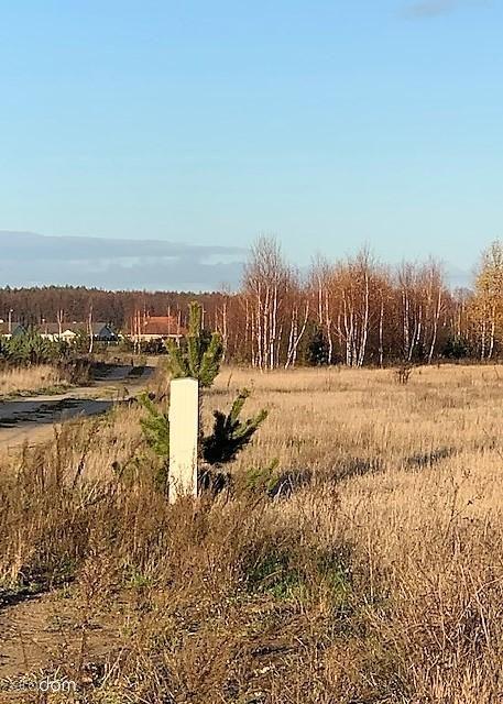 Działka na sprzedaż, Wierzyce, gnieźnieński, wielkopolskie - Foto 2