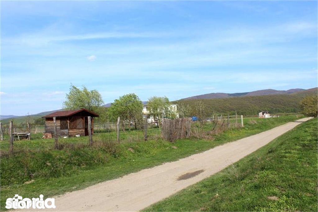 Teren de Vanzare, Budila, Brasov - Foto 3