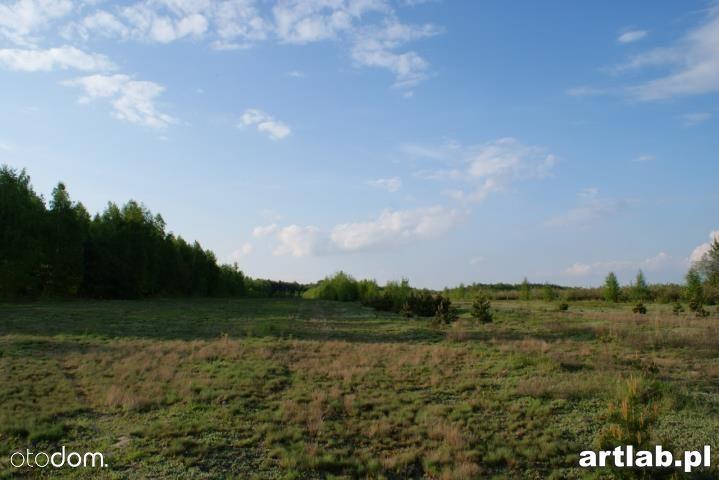 Działka na sprzedaż, Natalin, grójecki, mazowieckie - Foto 7