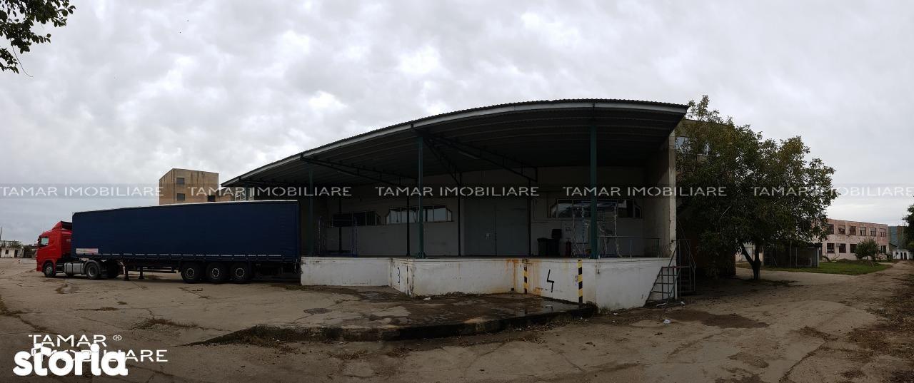Depozit / Hala de inchiriat, Arad (judet), 6 Vanători - Foto 5