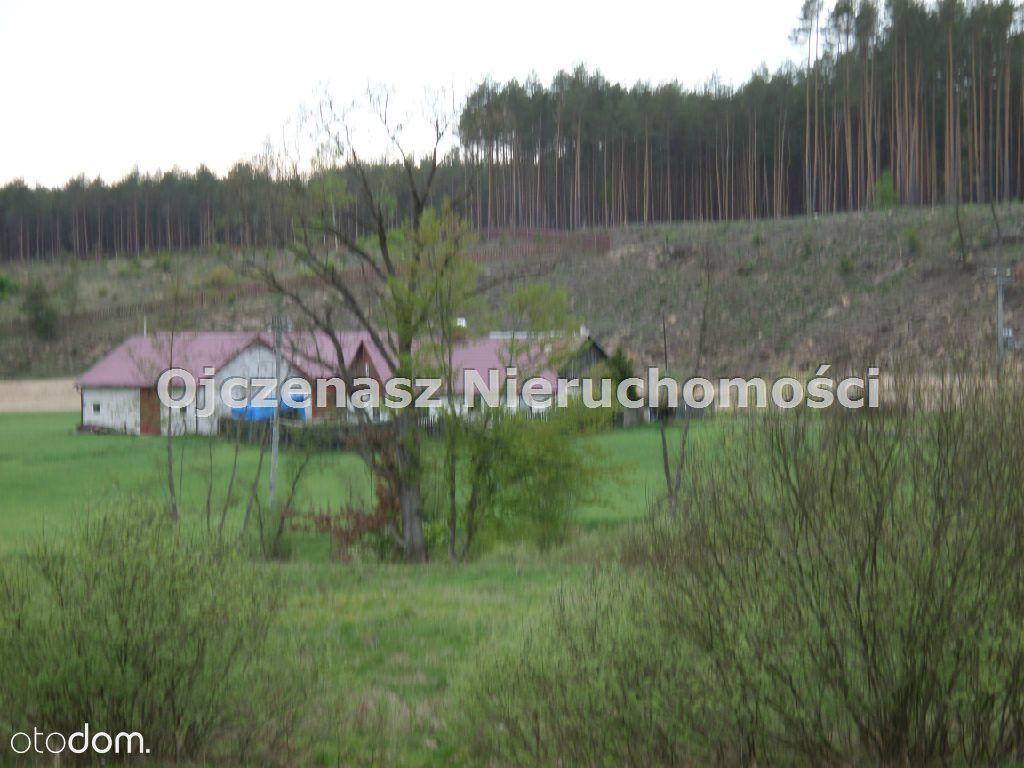 Działka na sprzedaż, Stara Rzeka, świecki, kujawsko-pomorskie - Foto 17
