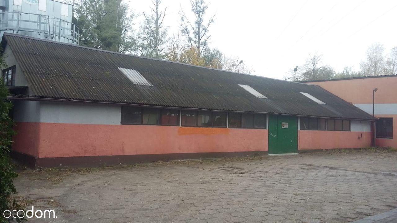 Hala/Magazyn na wynajem, Żory, Kleszczówka - Foto 3