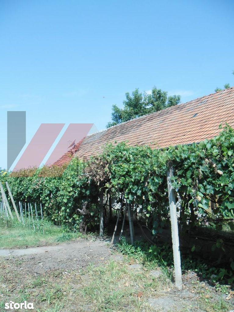 Casa de vanzare, Timiș (judet), Becicherecu Mic - Foto 11