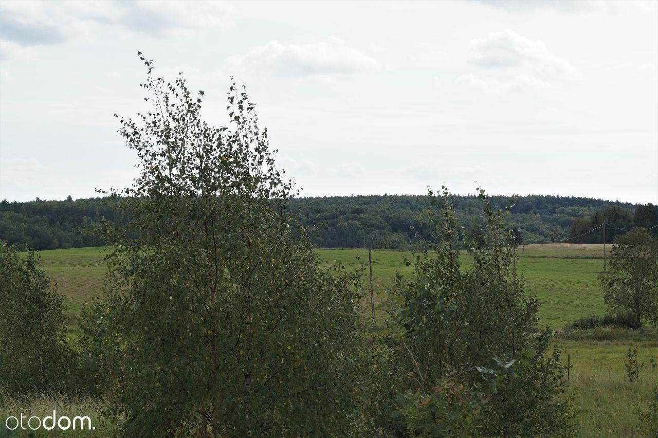 Działka na sprzedaż, Drzewina, gdański, pomorskie - Foto 14