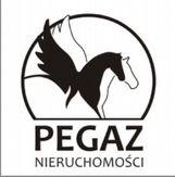 To ogłoszenie lokal użytkowy na wynajem jest promowane przez jedno z najbardziej profesjonalnych biur nieruchomości, działające w miejscowości Poznań, Centrum: Pegaz Nieruchomości Sp. z o.o.