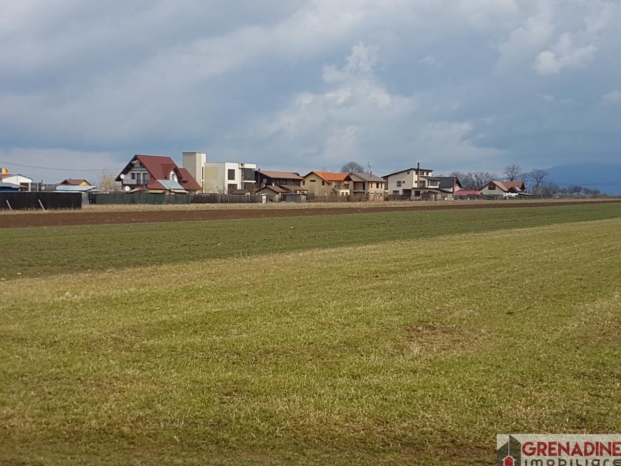 Teren de Vanzare, Tarlungeni, Brasov - Foto 2