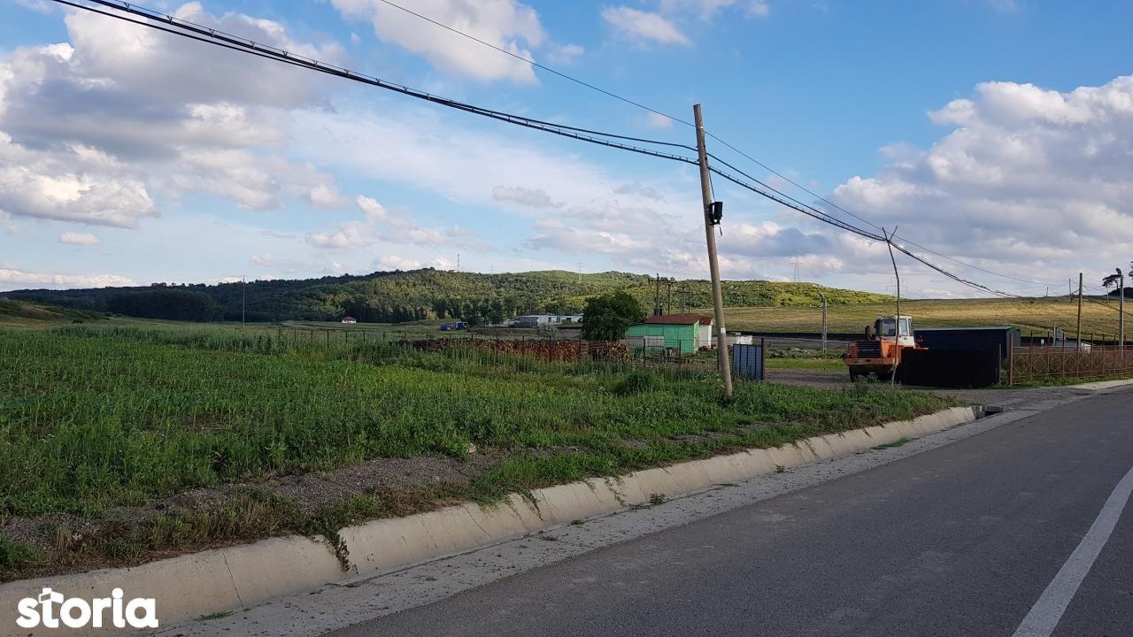 Teren de Vanzare, Iași (judet), Iaşi - Foto 7