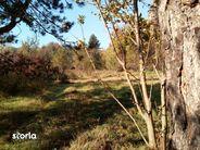 Teren de Vanzare, Suceava (judet), Suceava - Foto 4