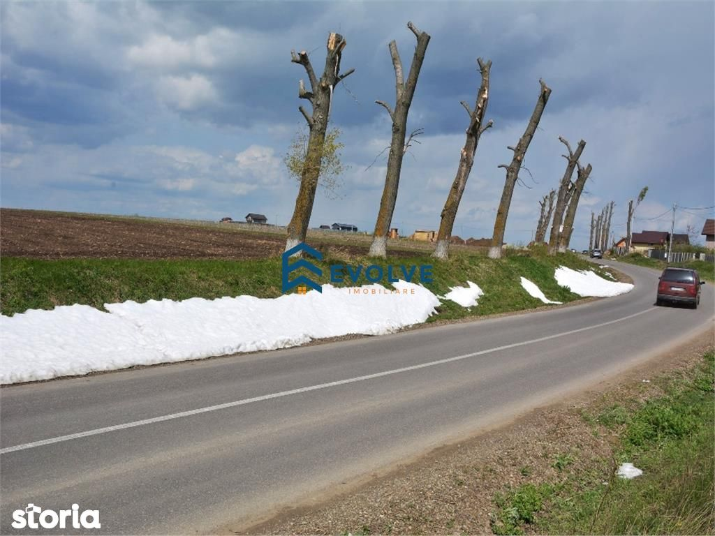 Teren de Vanzare, Iași (judet), Voroveşti - Foto 6