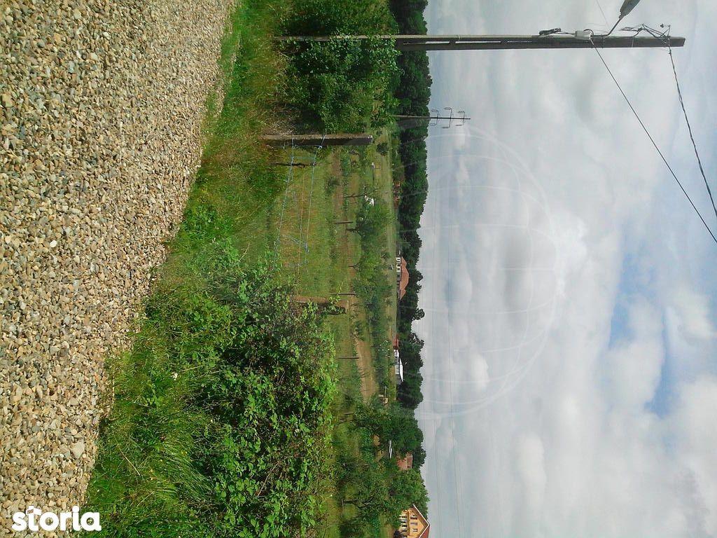 Teren de Vanzare, Bihor (judet), Betfia - Foto 4