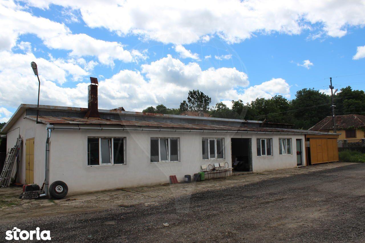 Depozit / Hala de vanzare, Slimnic, Sibiu - Foto 3