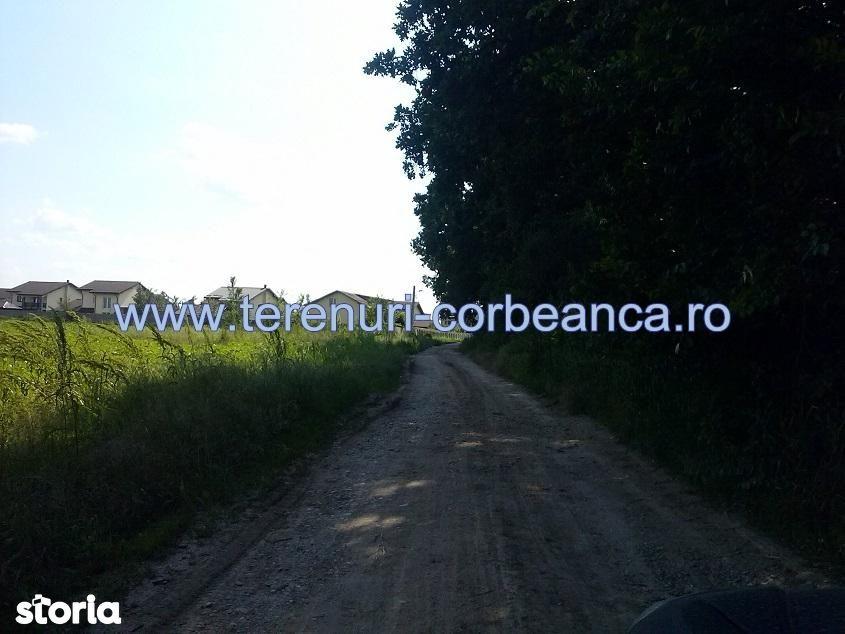 Teren de Vanzare, Ilfov (judet), Corbeanca - Foto 5