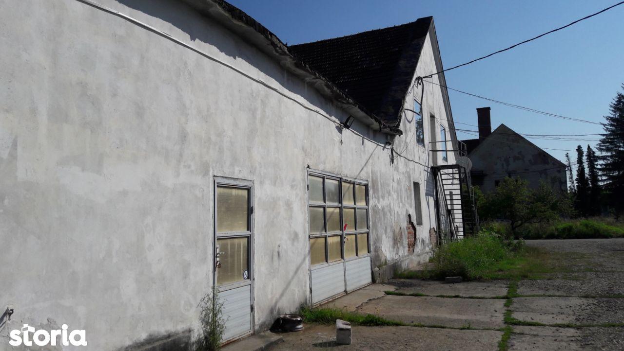 Depozit / Hala de vanzare, Caraș-Severin (judet), Strada Ardealului - Foto 1
