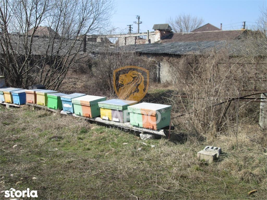 Teren de Vanzare, Alba (judet), Sebeş - Foto 9