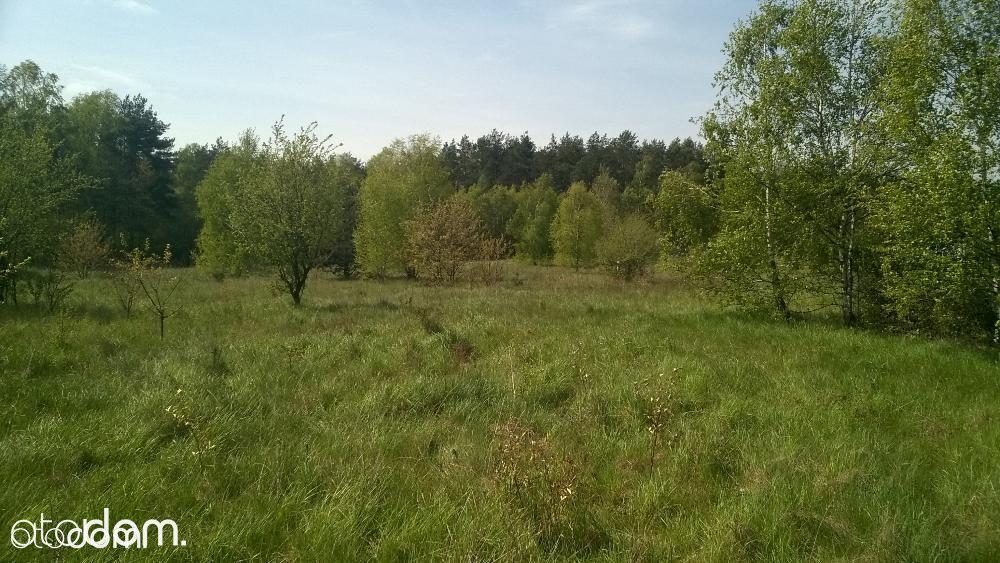 Działka na sprzedaż, Dąbrówka-Strumiany, zgierski, łódzkie - Foto 4