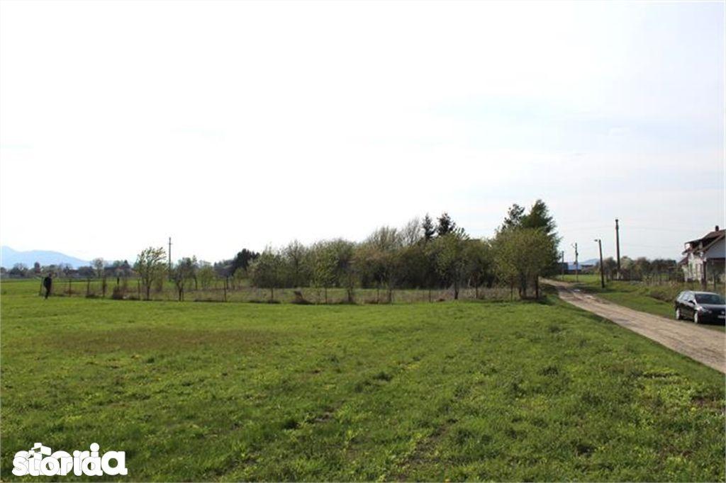 Teren de Vanzare, Budila, Brasov - Foto 4