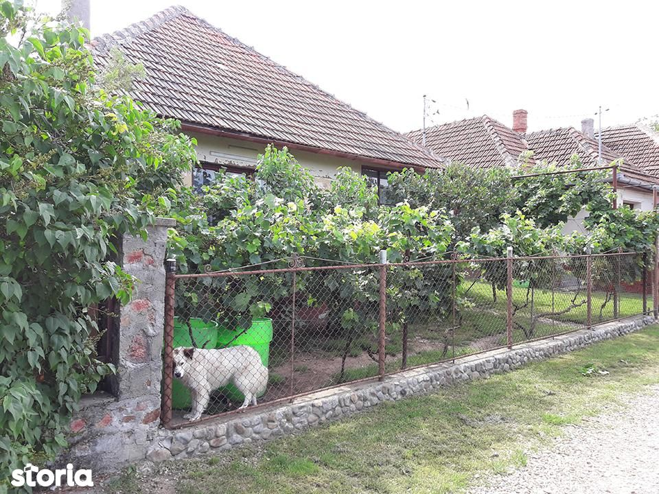 Casa de vanzare, Bihor (judet), Podgoria - Foto 1
