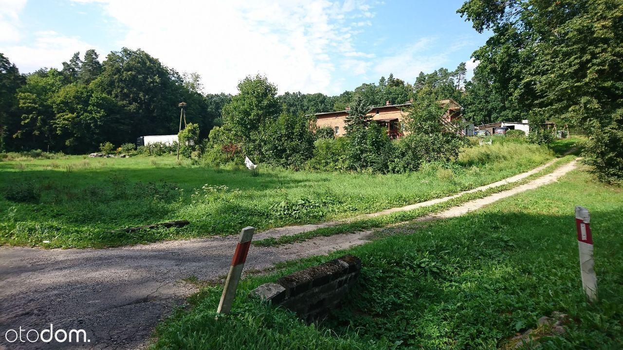 Działka na sprzedaż, Klasztorek, kwidzyński, pomorskie - Foto 5