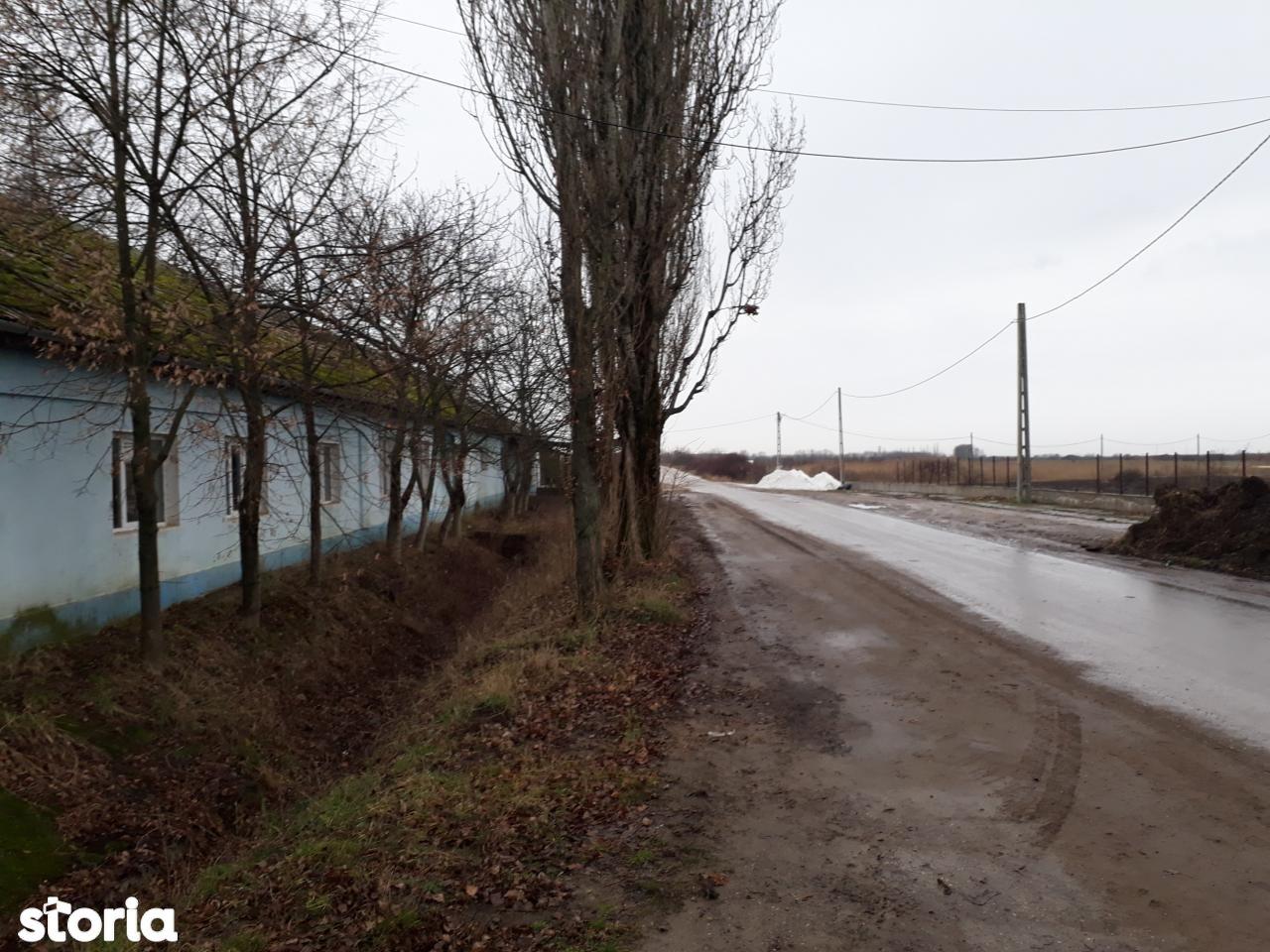 Depozit / Hala de vanzare, Bihor (judet), Strada Lajos Batthyany - Foto 7