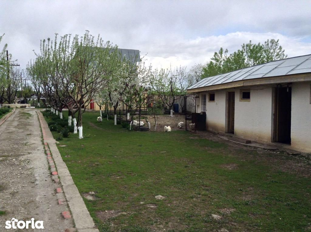 Teren de Vanzare, Giurgiu (judet), Gorneni - Foto 20