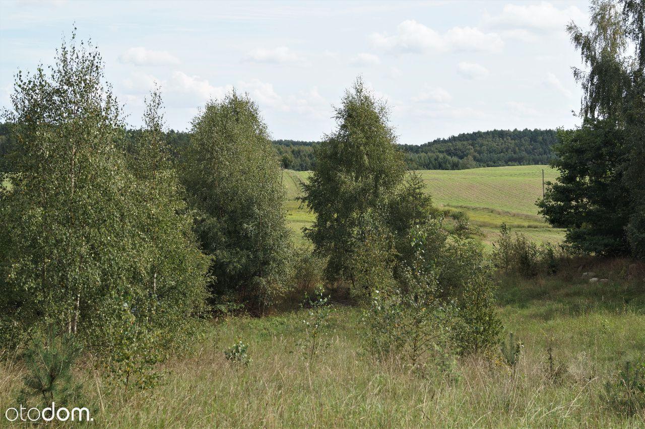 Działka na sprzedaż, Drzewina, gdański, pomorskie - Foto 9