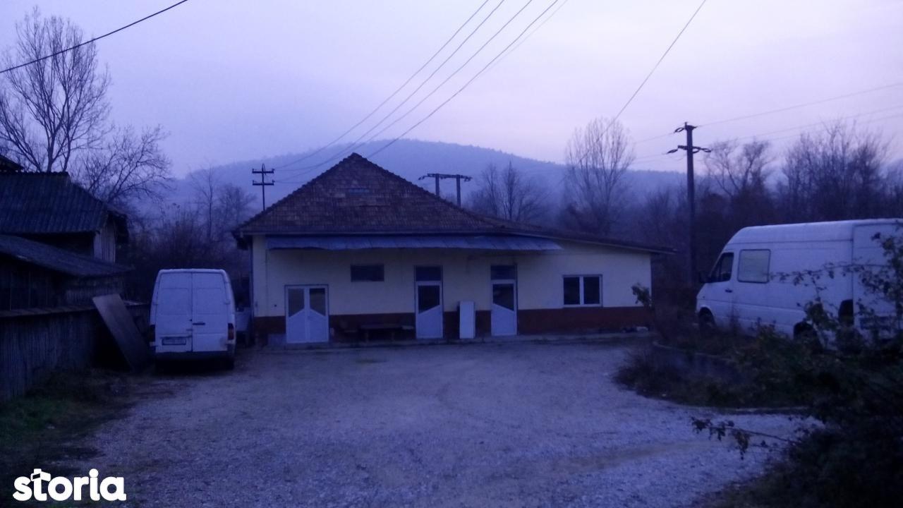 Spatiu Comercial de vanzare, Argeș (judet), Sălătrucu - Foto 1