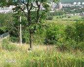 Teren de Vanzare, Cluj (judet), Strada Donath - Foto 5