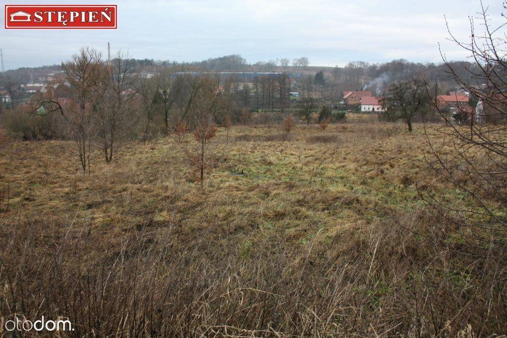 Działka na sprzedaż, Olszyna, lubański, dolnośląskie - Foto 1