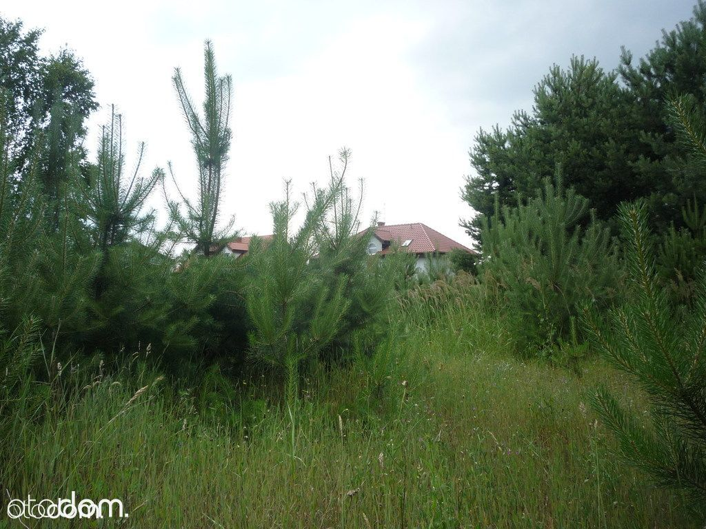 Działka na sprzedaż, Wierzyce, gnieźnieński, wielkopolskie - Foto 1