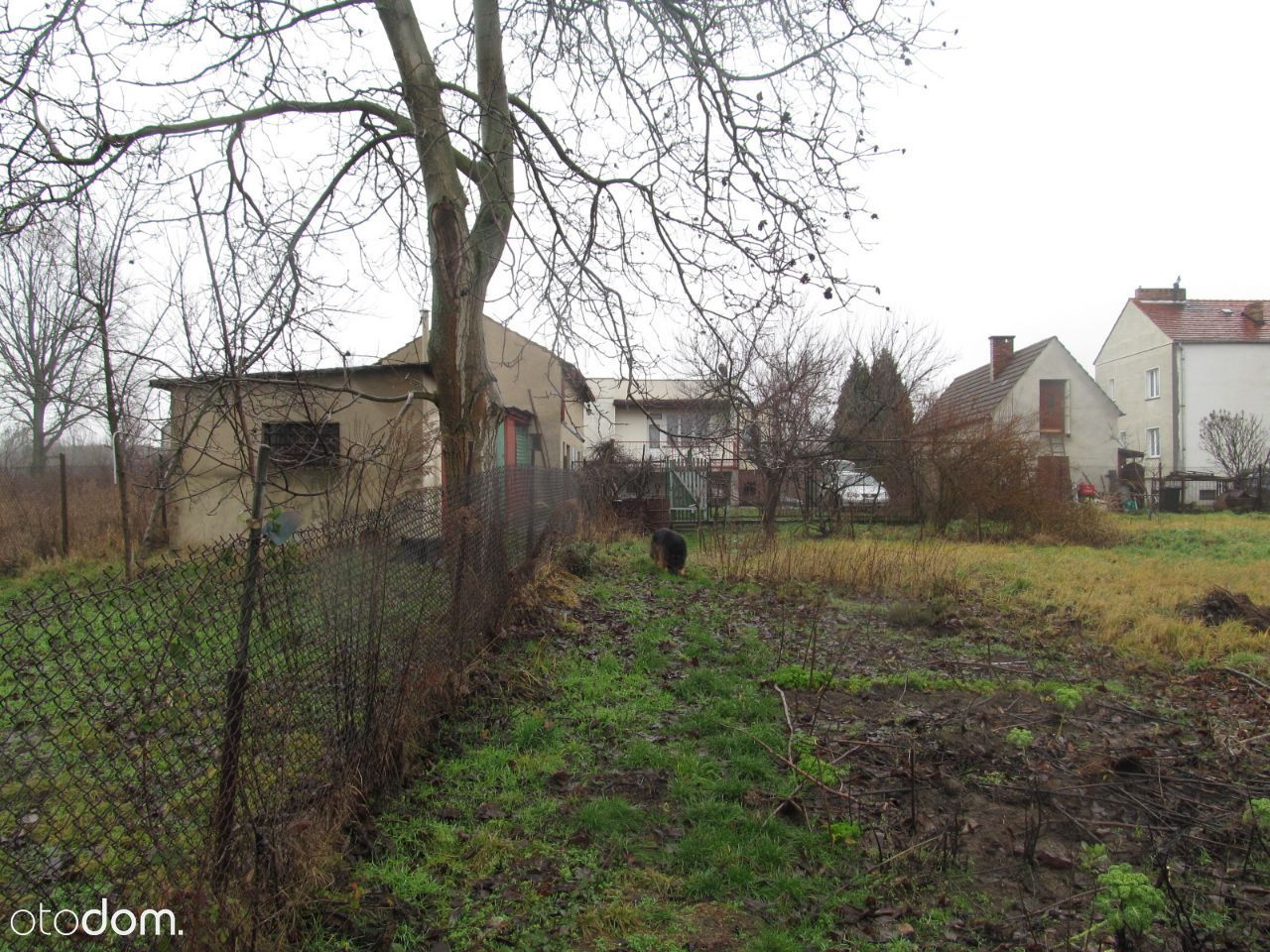 Dom na sprzedaż, Gubin, krośnieński, lubuskie - Foto 19
