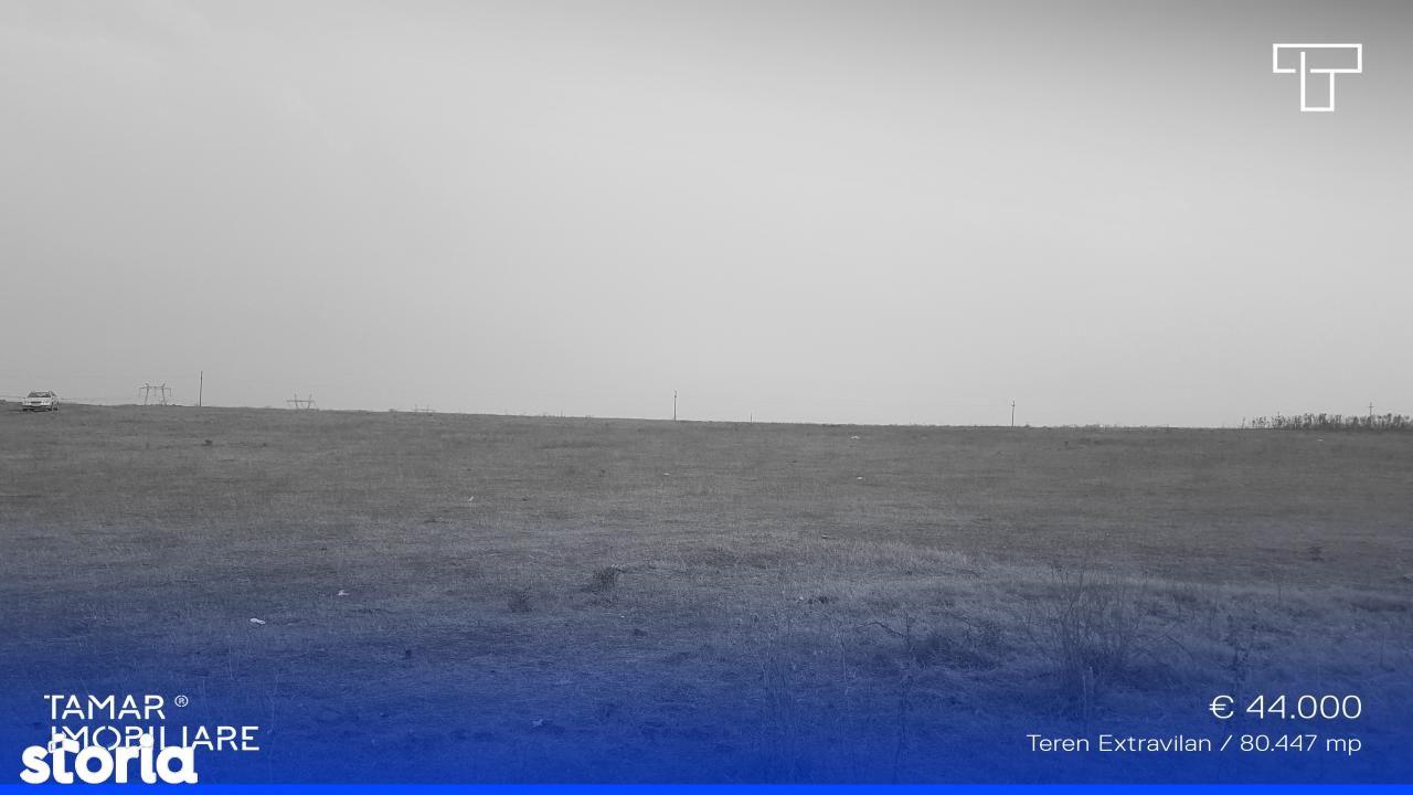 Teren de Vanzare, Arad (judet), Fântânele - Foto 1