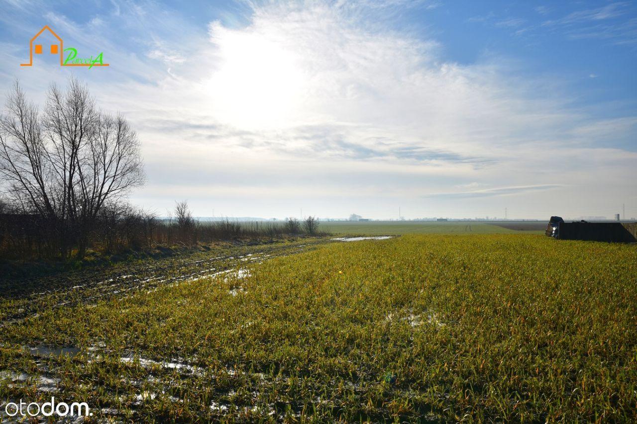 Działka na sprzedaż, Borzejewo, średzki, wielkopolskie - Foto 3