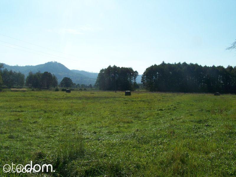 Działka na sprzedaż, Międzygórze, kłodzki, dolnośląskie - Foto 3