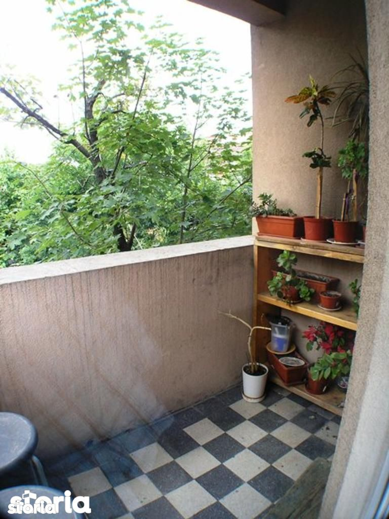Casa de inchiriat, Bucuresti, Sectorul 2, Pache Protopopescu - Foto 9