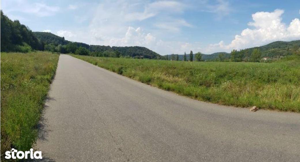 Teren de Vanzare, Caraș-Severin (judet), Strada Dr. Gheorghe Vucu - Foto 3